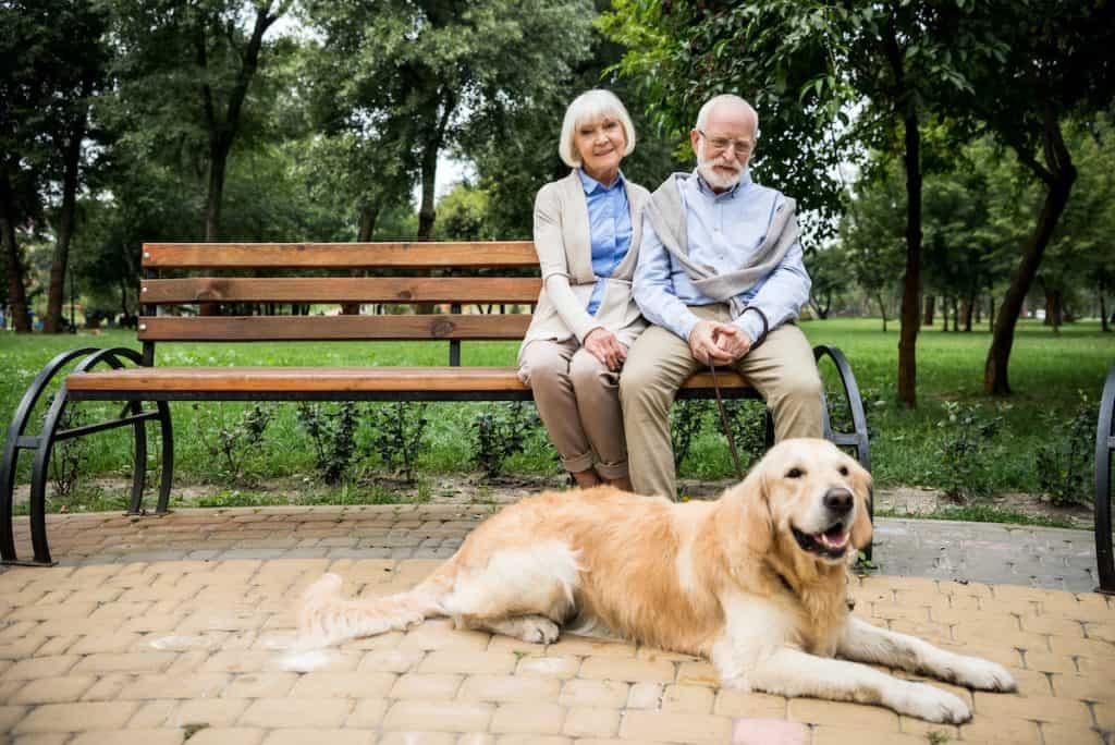 pets-for-seniors