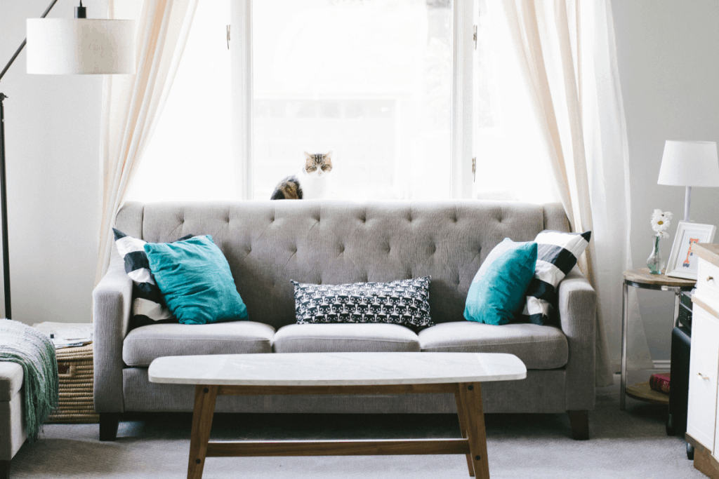 best-high-couch-for-seniors